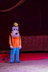 Lonely Goofy (max832) Tags: zuiko 60mm28 em10mark3 olympus micro43 mft roma circo ronyrogers circus stand actor cartoon character mask sadness loneliness lonely disney pippo goofy