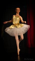 Ooo-la-la (Bina Fellowes) Tags: ballet tutu ballerina geraldinelamb100