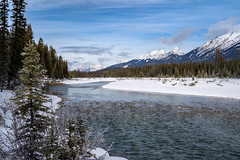 Banks of the Kootenay River in British Columbia Canada in Kootenay National Park during winter. Snow capped mountains in distance (m01229) Tags: rock nature dangerous icy kootenaynationalpark lake destination kootenayriver trees national britishcolumbia scenic burnedtrees canada banffwindermerehighway stone kootenay landscape rugged snowpack canyon rocky rockymountains sky british snowpillows morning rockies tourists mountains canadian nationalpark scenery icyoutdoors highway water hiking columbia bc narrow canadianrockies tourism travel mountain