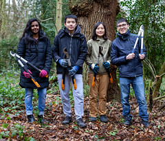 Holly Bashing - Park Wood - 12 Feb 2019 (Friends of Canley Green Spaces) Tags: canleygreenspaces canley coventry cv4 warwickvolunteers woodland trees parkwood treepruning