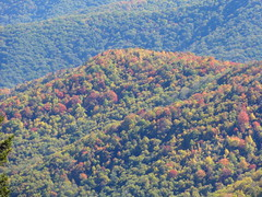 DSC07659 (TerrMys) Tags: northcarolina nc southern appalachians fall autumn october