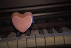 Love must grow every day! Valentine's day (Filipe Lameiras) Tags: love must grow every day valentines amor deve crescer todos os dias portugal coração piano