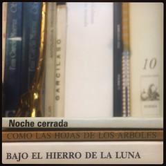 HAIKU DE ESTANTERÍA CLXXVI #haikusdestanteria (juanluisgx) Tags: leon spain book libro haiku estanteria haikusdeestanteria haikusdestanteria poema poem poetry poesia bookshelf