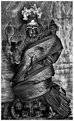 தாயார் சன்னதி / Goddess Vaishnavi Devi (Ramalakshmi Rajan) Tags: nikon nikond750 worship placesofworship temples temple kaadumalleshwarartemple malleshwaram bangalore idol idols goddess blackandwhite blackwhite bw nikkor50mm