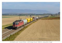 Re 420 294 - Essert-Pittet (CC72080) Tags: re420 cff sbb locomotive train cargo ffs essertpittet re44