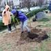 Ayrsley_Tree_Planting_2019_ (59)