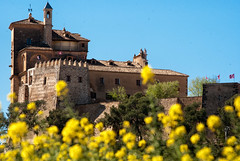"""The yellow time"" (Miguel Angel SGR) Tags: caravaca de la cruz murcia españa caravacacaravaca spain castle castillo flores flowers color colorful paisaje landscape yellow amarillo monumento monuments travel trips tour viajes viajar nikon d3000"
