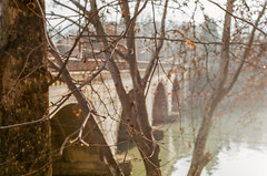 Autumn city of Tbilisi (My . December) Tags: fujisuperia200 fuji nikonf100 nikolozjorjikashvili 50mmf18 film analog analogue ishootfilm tbilisi georgia mydecember landscape grain roll superia