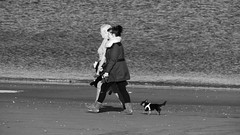 Seaside Strolling 01 (byronv2) Tags: edinburgh edimbourg scotland sea seaside coast coastal peoplewatching candid street walking water river rnbforth firthofforth riverforth forth portobello blackandwhite blackwhite bw monochrome dog