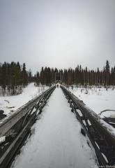 Z19_1253 LT (Zoran Babich) Tags: lapland lappi finland suomi winter snow landscape vikäjärvi bridge