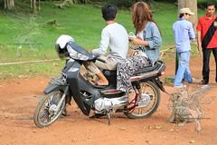 Angkor_Siem Reap_2014_19