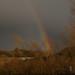 Rainbow_07-03-19_004