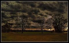 Kein Licht, kein Wetter, kein Foto? (einfache Fotomomente) Tags: panasonic dmcg81 wolken landscape landschaft trees bäume abend dunkel wenig licht