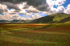 Valle fiorita!!! (Enzo Ghignoni) Tags: fiori valle campi cielo nuvole colline montagne
