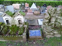TOBY ET POILU (marsupilami92) Tags: frankreich france îledefrance 92 hautsdeseine asnièressurseine cimetière îlerobinson