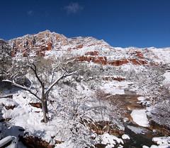 Oak Creek Winter Wonderland (squeaks2569) Tags: sedona snow sedonasnow oakcreek oakcreekcanyon canyon arizona az usa unitedstates ice water creek winter stream redrock