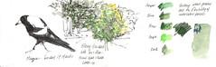 17March2019 sketching in Fitzroy Gardens (alissa duke) Tags: fitzroygardens