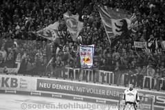 DSC_7396 (Sören Kohlhuber) Tags: eisbärenberlin dynamo eishockey red bull münchen del playoff