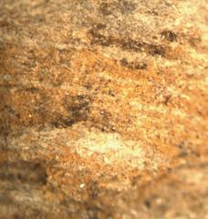 1552668231.313828 (jgdav) Tags: ancient quartz pigment rock ochre blue image micro america pictograph