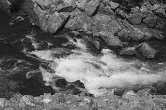 Clear Creek flowing between rocks, in black and white. Taken on 8-9-18, in Clear Creek Canyon, Colorado.  ~ ~ ~ ~ ~  #CanonRebelT5 #Canon #Rebel #T5 F/5.6 55mm 1/2500s ISO-320 #ClearCreek #rocks #blackandwhite #ClearCreekCanyon #Colorado #oooShiny #oooShi (oooshinyphotography) Tags: canonrebelt5 clearcreekcanyon naturephotography coloradoshared watercaptures rock coloradotography canon oooshiny rocks blackandwhite creek colorado clearcreek bnwcaptures blackandwhitephotography t5 coloradolove rebel nature bnw water coloradocreative coloradophotography oooshinyphotography viewcolorado coloradophotographer bnwphotography river coloradocollective