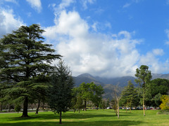 Clouds Over The Mountains (Vicki LW) Tags: ranchocucamonga clouds mountains trees sky 100xthe2019edition 100x2019 image18100