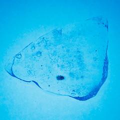 Spring ice (Antti Tassberg) Tags: blue jää hotorcold macromondays macro 100mm ice lens prime