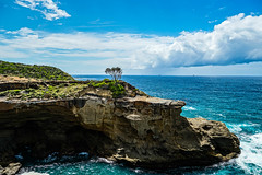 Lonely tree (bofmichal) Tags: travel trip tree ocean australia beautiful sky skyline clouds sunny landscape view adventure discover journey explore rocks shore coast coastline sony sonyalpha flickrtravelaward worldtrekker nature world earth