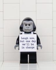 Lego Banksy Laugh Now (Eddy Plu) Tags: lego minifigure banksy urbanart art legobanksy legominifigs legominifiguren legominifigures legography legominifigure legominifig moc tfol afol photography stencilart wall legoart bricks brickart brickartist artist laughnow