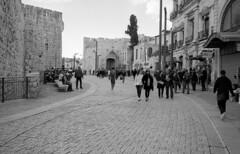 Jaffa Gate Jerusalem January 1, 2019 (Ilya.Bur) Tags: nicca 3s voigtlander skopar 35mm f25 fujifilm acros 200 caffenolcl jaffa gate jerusalem