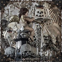 Instead of a capital at the top of the columns, you will find various plump cherubs (or putto), holding musical instruments or skulls in their laps. (To be continued...) . 💀Turn on post notifications, click link in BIO to follow along on our journey (Sedlec Ossuary Project) Tags: sedlecossuaryproject sedlec ossuary project sedlecossuary kostnice kutnahora kutna hora prague czechrepublic czech republic czechia churchofbones church bones skeleton skulls humanbones human mementomori memento mori creepy travel macabre death dark historical architecture historicpreservation historic preservation landmark explore unusual mechanicalwhispers mechanical whispers instagram ifttt