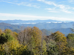 DSC07499 (TerrMys) Tags: northcarolina nc southern appalachians fall autumn october