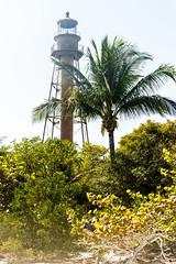 Sanibel Lighthouse (JimmyJGreen) Tags: florida february summer sanibel island beach sand shore palms