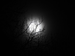 50/2019 (pepitaphotos) Tags: bw astrophotography nature space supersnowmoon snowmoon supermoon fullmoon moon