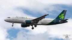 EI-DVN A320 EIN