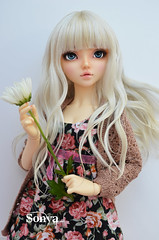 DSC_2034 (sonya_wig) Tags: fairytreewigs wig bjdwig minifeewig bjd bjdminifee minifeechloe handmadedoll bjddoll dollphoto fairyland fairylandminifee minifee chloe bjdphotographycoloringhair