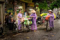 Rainy Spring in Hanoi (Goran Bangkok) Tags: bicycle flowers hanoi rain street vegetables vendors vietnam streetphotography hat women happyplanet asiafavorites hoankiem fujixt3