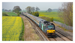 ECS (Trev 'Big T' Hurley) Tags: 68034 68003 68 class68 vossloh cat drs portway rapeseed tamworth staffordshire farmland fields mk2s brblue