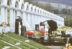 012505  Bryntaf cemetary, Aberfan, 1975 (John Walmsley) Tags: aberfan aberfandisaster britain bryntafcemetery gb gbr glamorgan southwales uk wales graveyard headstones johnwalmsley walmsley