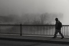 Niebla en el río Ebro (Luis L.Modrego) Tags: ríoebro tudela niebla fog navarra agua water world trekke worldtrekker