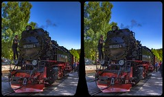 Maintenance 3-D / CrossView / Stereoscopy (Stereotron) Tags: sachsenanhalt saxonyanhalt ostfalen harz mountains gebirge ostfalia hardt hart hercynia harzgau railway train locomotive steam dampflok deutschland germany europe cross eye view xview crosseye pair free sidebyside sbs kreuzblick bildpaar 3d photo image stereo spatial stereophoto stereophotography stereoscopic stereoscopy stereotron threedimensional stereoview stereophotomaker photography picture raumbild twin canon eos 550d remote control synchron kitlens 1855mm 100v10f tonemapping hdr hdri raw