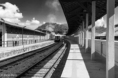 Guararema train station (elcio.reis) Tags: brasil sãopaulo guararema nikon estação brazil blackwhite pb station bw br