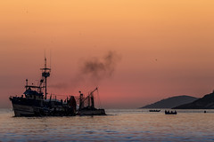 Praia Vermelha - Rio de Janeiro (mariohowat) Tags: barcos praiavermelha praiasdoriodejaneiro amanhecer alvorada sunrise canon6d brasil brazil