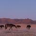 Namibie def-14