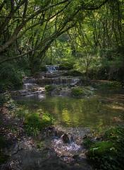 Sentonina staza waterfall (2) (JLM62380) Tags: croatia rabac labin istria istrie croatie sentoninastaza waterfall cascade river wood forest tree rivière eau forêt ruisseau arbre