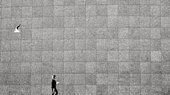 The wall (sarimeh) Tags: blacknwhite black white bnw siyah beyaz siyahbeyaz d800 genişaçı nikon nikkor1424 urban citylife wanderlust traveltheworld travelphotography 85mm