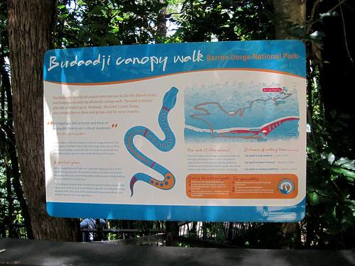 IMG_1761 Budaadji Canopy Walk