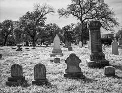 AustinOakwoodCemetery_infrared-191 (wanderingYew2 (thanks for 4M+ views!)) Tags: 120 6x7 austin austintx austintexas mamiya mamiya7ii oakwoodcemetery r72filter blackandwhite blackandwhitefilm cemetery film filmscan infrared infraredfilm mediumformat