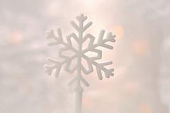 Bag It & Tag It ! (Caroline.32) Tags: macro macromondays whiteonwhite snowflake lightflare plasticbag sandwichbag nikond3200 50mm18 extensiontubes extensiontube12mm
