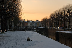 Portus Ganda, Ghent (Adrià Páez) Tags: portus ganda ghent gent gand vlaanderen oostvlaanderen flanders eastflanders belgium belgië europe sunset orange trees winter branches snow buildings houses city sky canon eos 7d mark ii