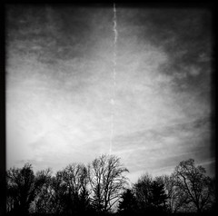 Ionosphere (Creepella Gruesome) Tags: iphone6splus hipstamatic nature trees branches silhouettes sky clouds contrail squareformat blackandwhite